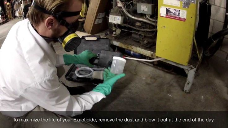 The Exacticide - Featuring Beacon Pest Control