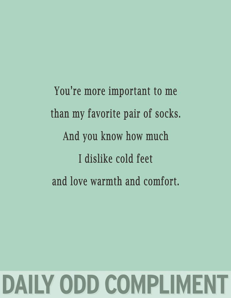 Daily Odd Compliment