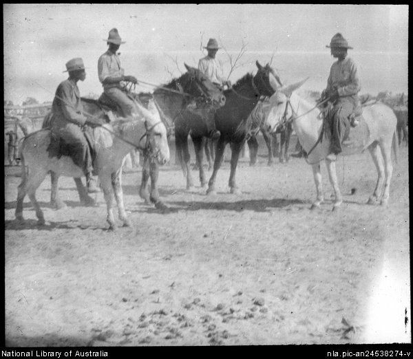 Flynn, John, 1880-1951. Men on horses and donkeys [transparency] : scenes in the Diamantina area and other general scenes