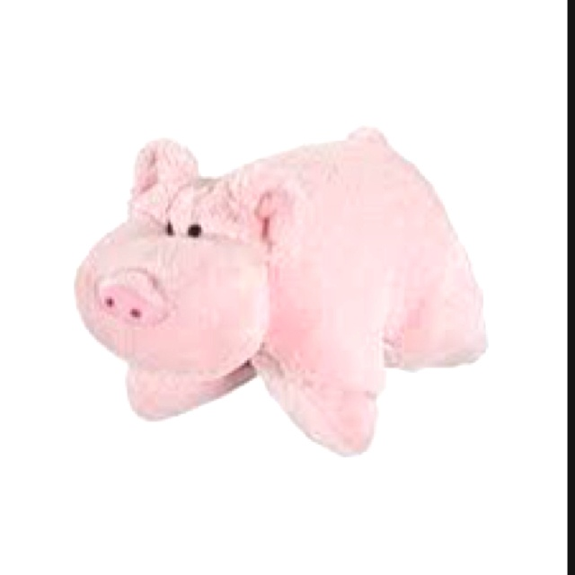 My pillowpet :) | Animal pillows, Pet pigs, Pig pillow