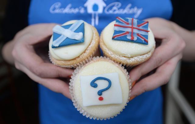 Cupcake per il referendum
