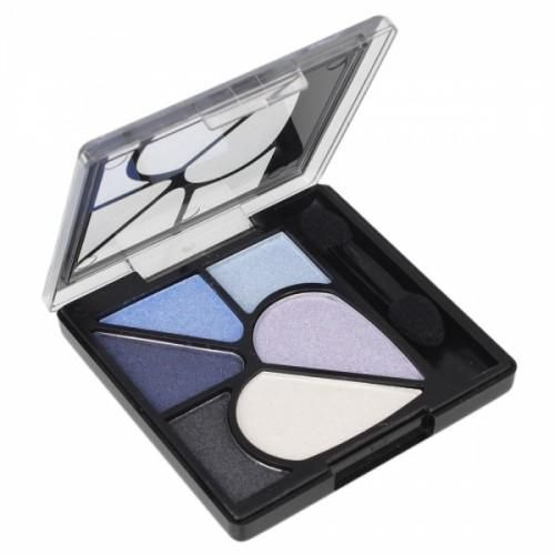 6 Color Professional Eyeshadow Palette