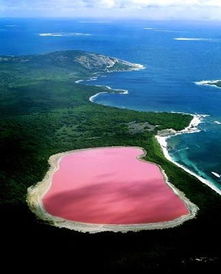 PINK LAKE: Hiller lake, Western Australia - Scientists have proven the strange pink color is due to the presence of algae.