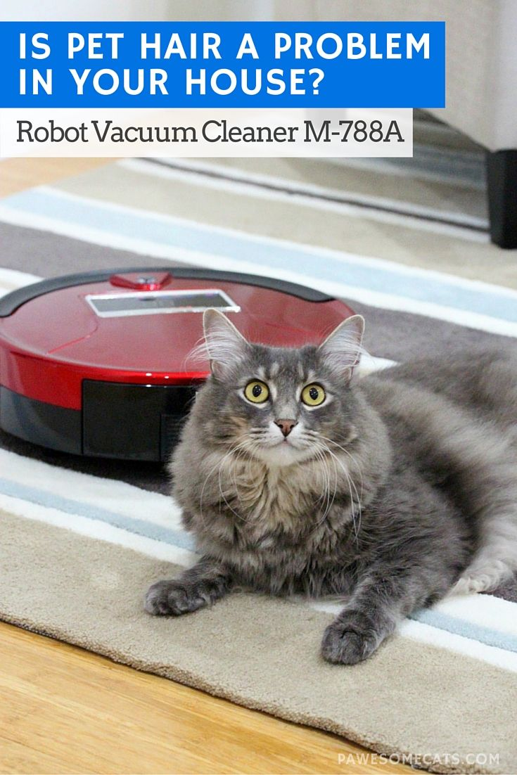 Is Pet Hair a Problem in Your House? Robot Vacuum Cleaner Giveaway