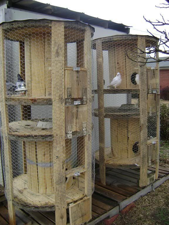 Chicken coops using spools! Very clever upcycle! Could probably get them from phone or cable company.