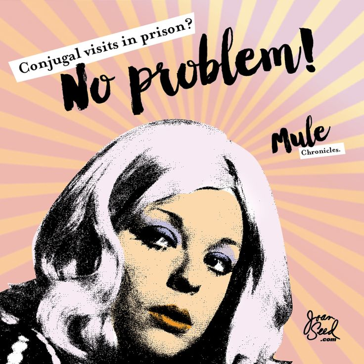 Conjugal visits in prison? No problem! Mule Chronicles. 🐴xJoan #joanseed #weedwomen #weedsociety #badgirls #randomactsofkindness