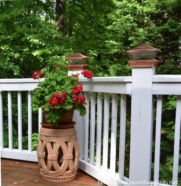 96 Best Images About Wpc Planter Pot: 96 Best Pots And Planters Images On Pinterest