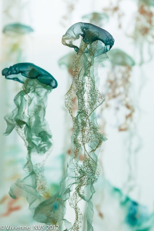 Life Like A Fairytale | oceanographic: Flight of the Jellies (by SF... | via Tumblr | We Heart It