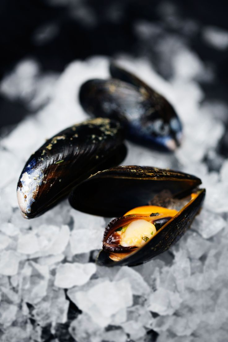 Mussels straight from the sea. | Nordic Choice #localeataward