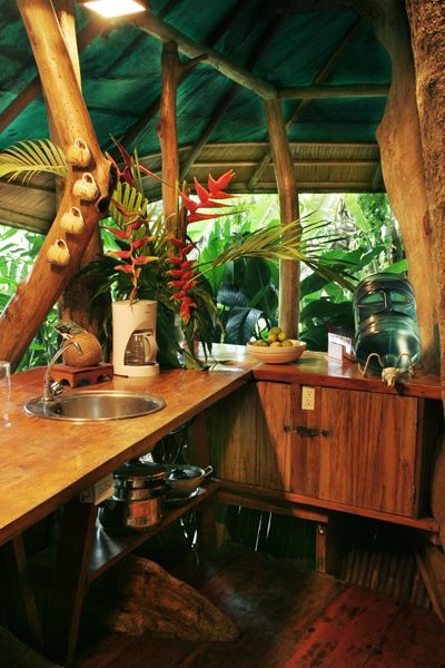 113 Best Tree House Hotels Images On Pinterest