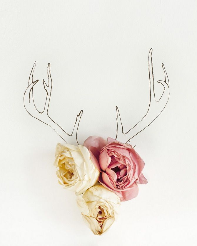 Flowers variations: Wall Art, Line Drawings, Wall Decor, Idea, Walldecor, Antlers, Flowers Photos, Deer Head, Flowers Art