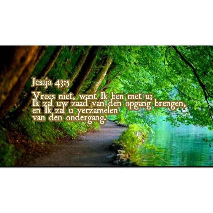 Jesaja 43:5  Statenvertaling