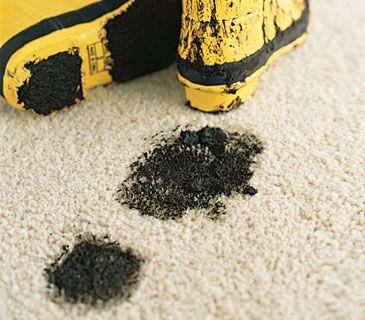 Homemade rug cleaner