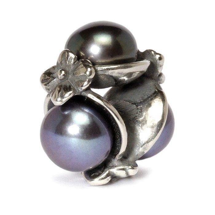 Wir alle wissen, dass es ein Zeichen des Glücks ist, ein vierblättriges Kleeblatt zu finden. Aber im Feenreich wird es Ihnen Glück bringen, wenn Sie eine Auster mit drei schwarzen Perlen in ihrer schützenden Schale finden.