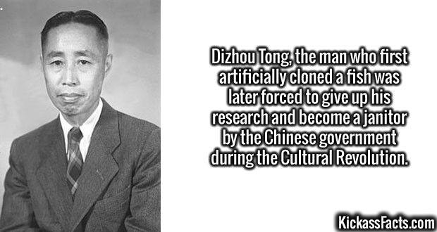 2698 Dizhou Tong