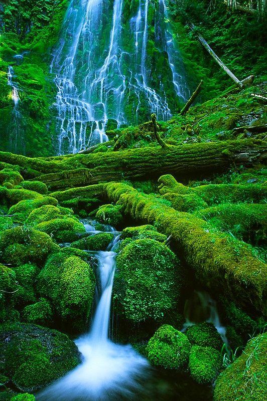 Proxy Falls in Oregon