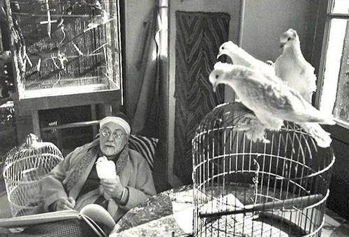 Henri Cartier-Bresson - Henri Matisse