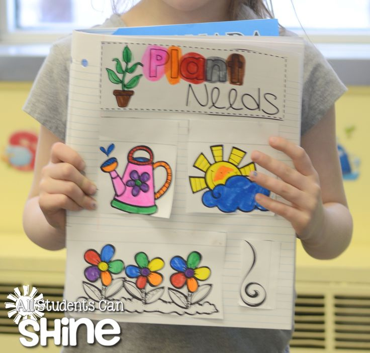 Interactive Notebooks – Could use to have kids describe and then write behind flaps as we'll.
