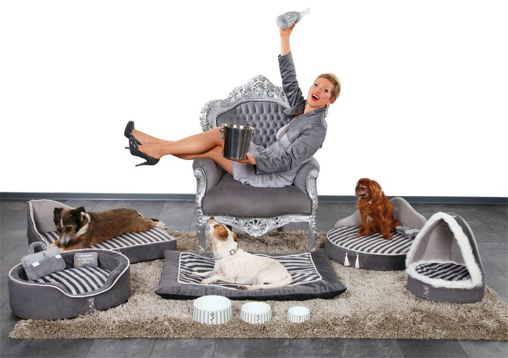 TRIXIE Collection designed by Princess Maja von Hohenzollern - Welcome - EN