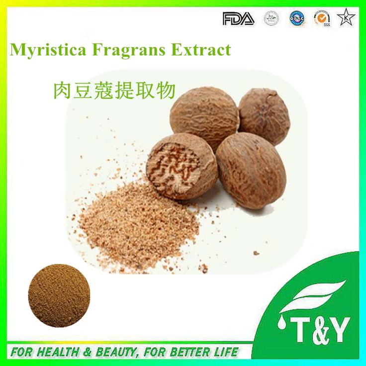 800g Top quality Myristica Fragrans / Nutmeg Extract powder with free shipping