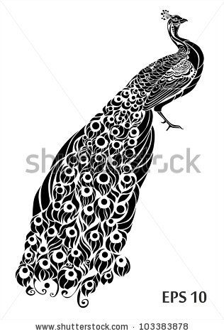 Peacock black white