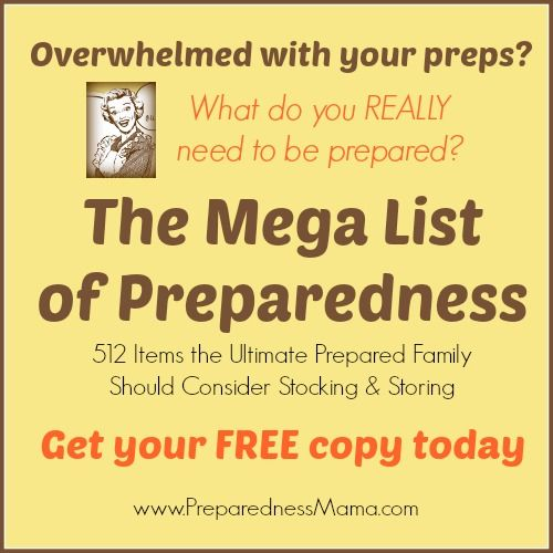 Get your FREE copy of The Mega List of Preparedness: 512 Items the Ultimate Prepared Family Should Consdier Stocking & Storing