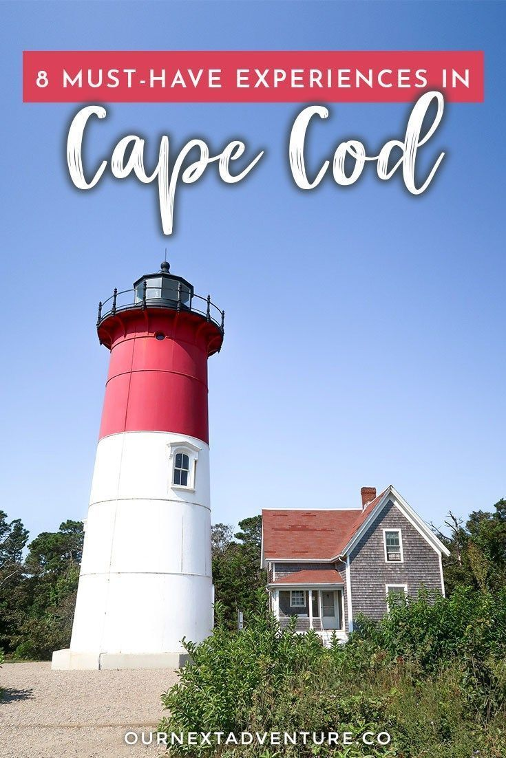 8 Must Have Experiences In Cape Cod With Kids Our Next Adventure Cape Cod Vacation Day Trips From Boston Cape Cod