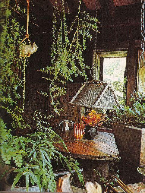 hanging plants / Magic Garden <3