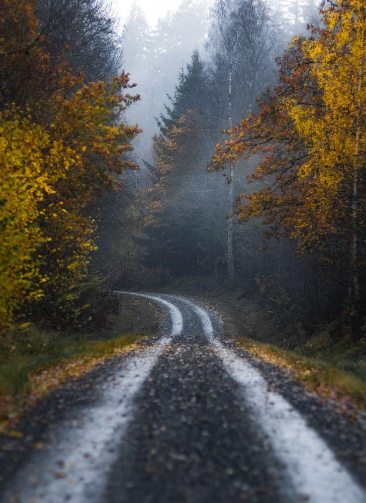 Country road (Sweden) by Magnus Dovlind cr.