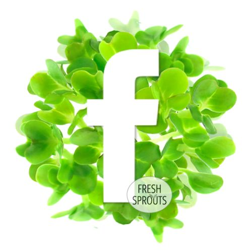 Facebook icon - by FreshSprouts.dk