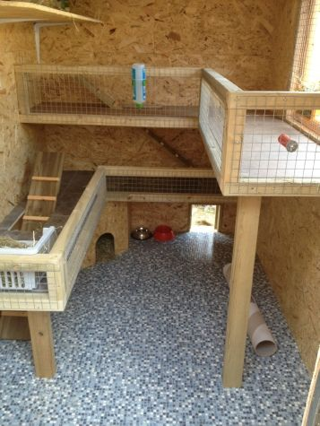 I'd love to make something like this for our bunnies!