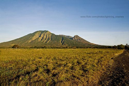 Africa van Java. @ Baluran National Park, Banyuwangi  - East Java - Indonesia