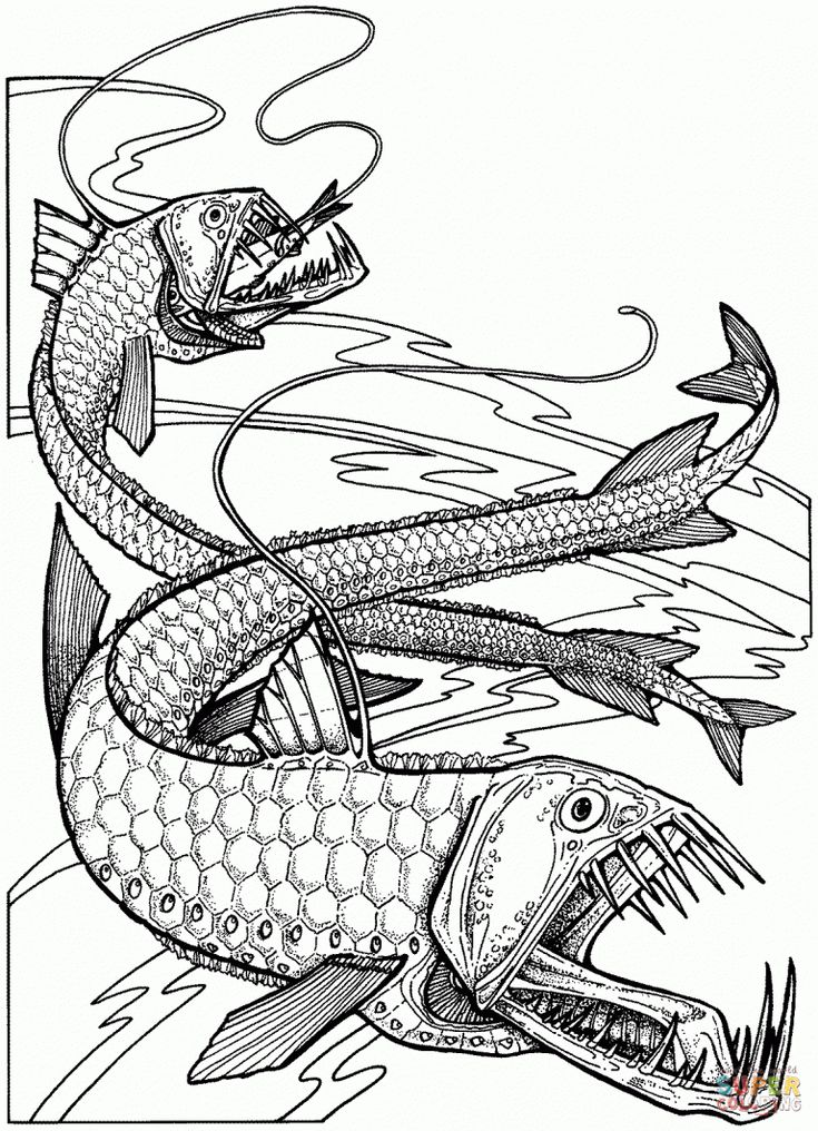Free Printable Coloring Pages In Oarfish Coloring Pages Fish Coloring Page Coloring Pages Free Printable Coloring Pages