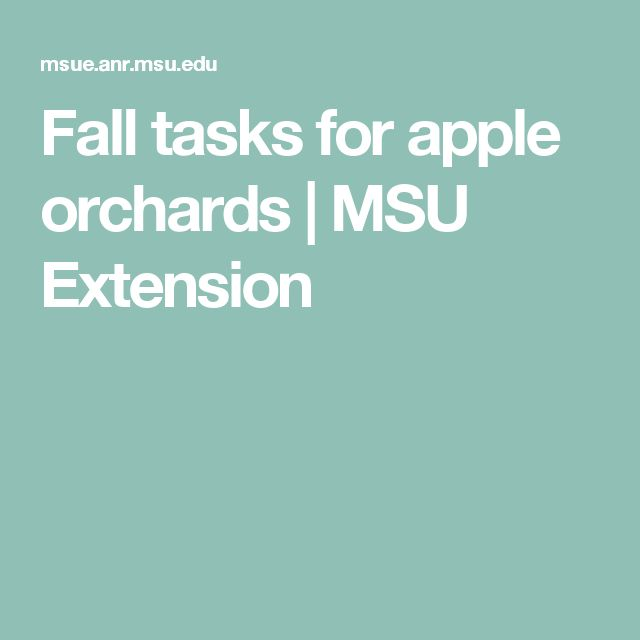 Fall tasks for apple orchards | MSU Extension