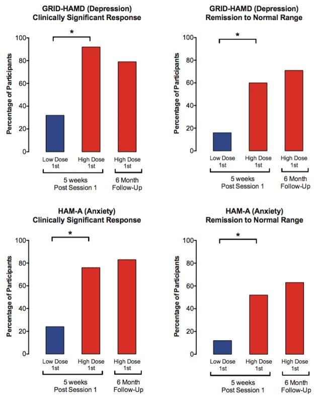 Una investigación que podría cambiar el tratamiento de la depresión y la ansiedad mostró que una dosis de psilocibina alivió a pacientes con cáncer de su depresión y/o ansiedad