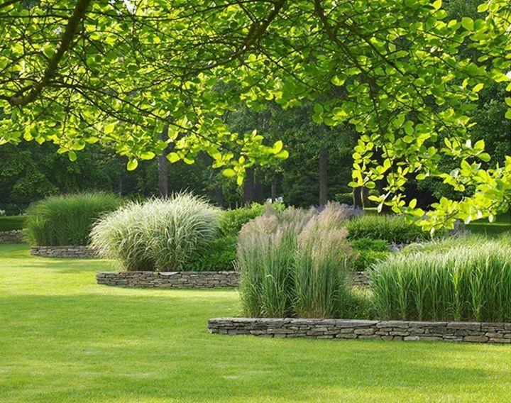 1625 best ornamental grass perennial meadows images on Pinterest