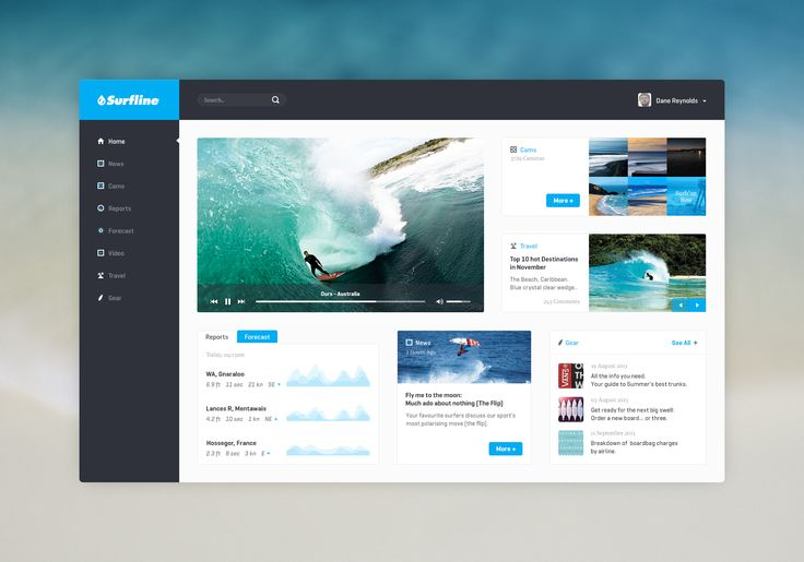 Surfline_non_retina