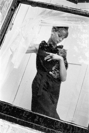 Jean Shrimpton with Cat