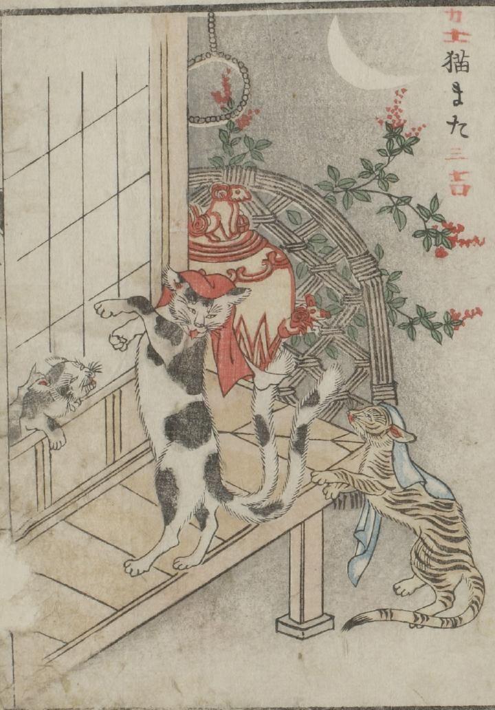 浮世絵の猫 : Photo
