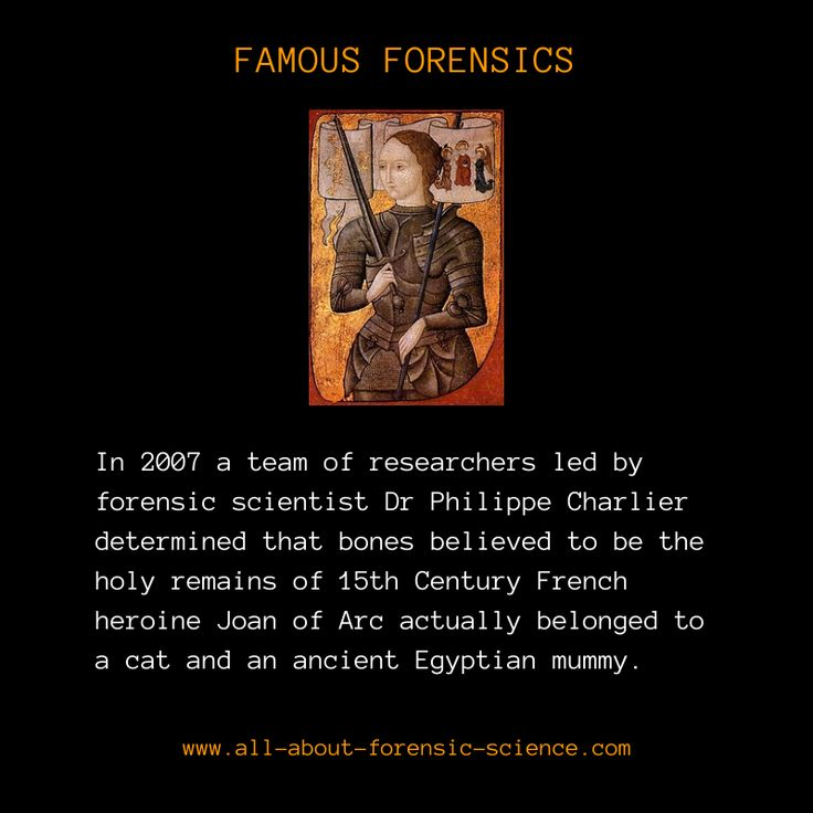 how to become a forensic scientist uk