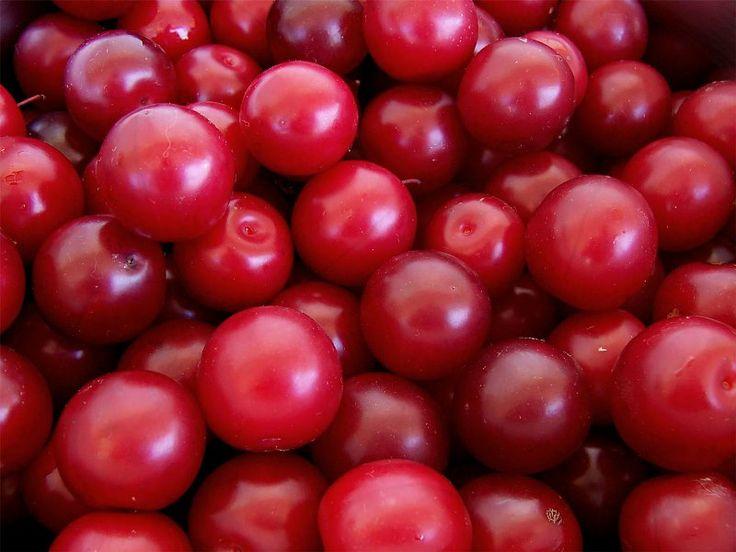 Plum Wine Recipe – How to Make Plum Wine - http://ihowtomakewine.com/plum-wine-recipe-how-to-make-plum-wine/