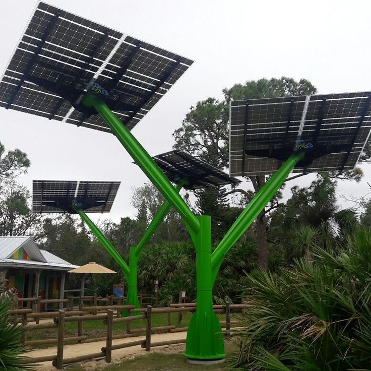 Solar trees at the Brevard Zoo! Awesome pieces of clean tech and a great way to educate the public about solar energy.  #sustainability #science #community #brevardzoo #Brevard #clean #cleanenergy #solar #solarpanels #solartrees #renewableenergy #renewables #future #theendofthebeginning