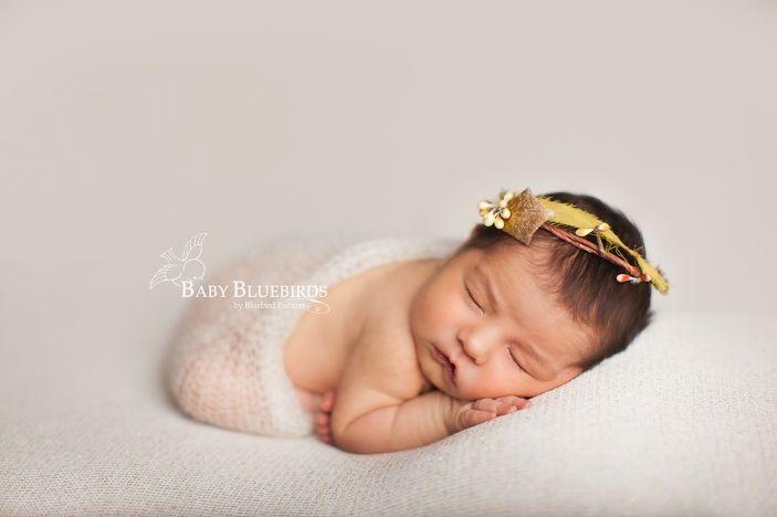 Baby bird olivia utah county newborn photographer