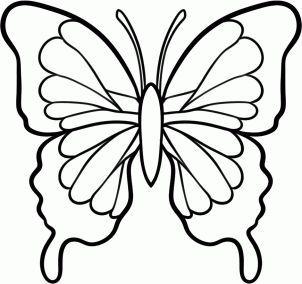 Best 25+ Butterfly drawing ideas on Pinterest