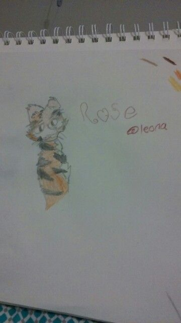A new fnaf OC Rose the tiger. She's very sweet, shy, and insecure. She always tries to please everybody, but they find something about her to complain about no matter what. She hardly listens to music, but she likes the band Twenty One Pilots.