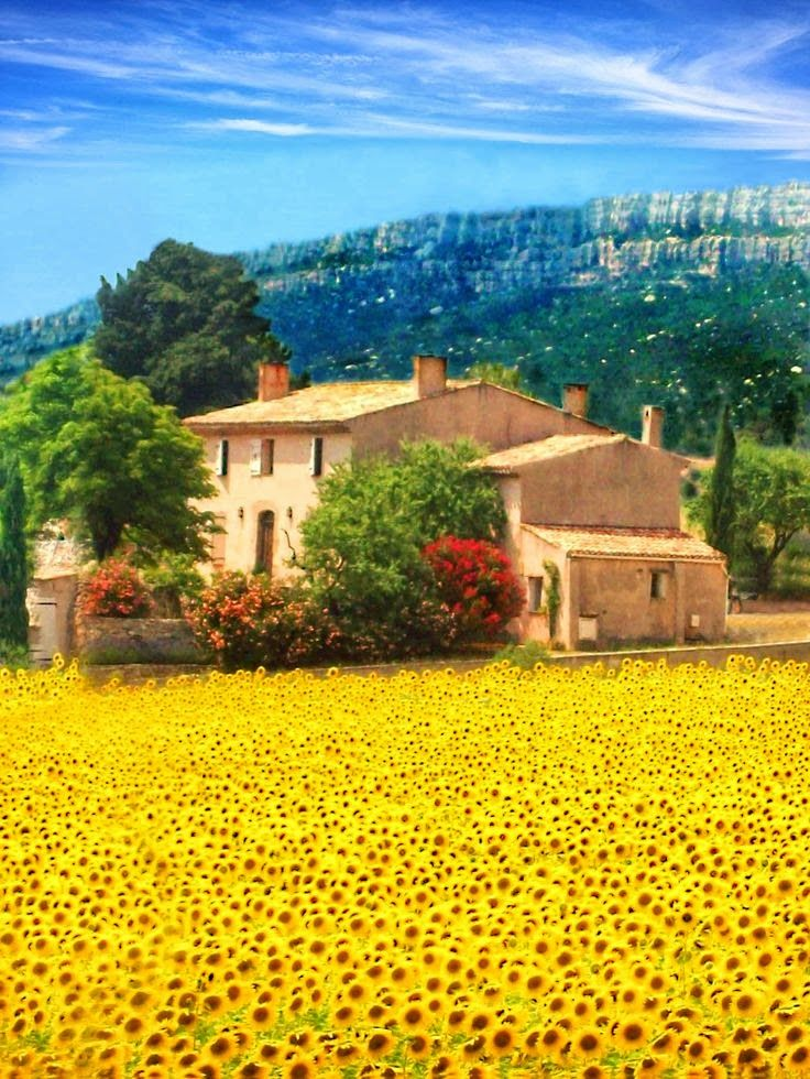Sainte Maxime, France                                                                                                                                                                                 Mais