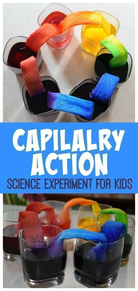 Capilalry Action Science Experiment for Kids - This is such a fun way for kids to explore and learn with a hands on science project for toddler, preschool, prek, kindergarten, first grade, 2nd grade, 3rd grade, 4th grade, 5th grade, 6th grade. EASY and QUICK to do (kids activities, summer activities for kids, homeschool, summer science)
