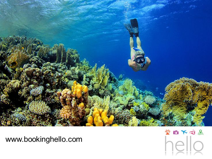 EL MEJOR ALL INCLUSIVE AL CARIBE. Existen diversas formas de sorprenderte con la belleza de los paisajes del Caribe. Visitar Isla Mujeres puede ser una gran opción para que tú y tus amigos conozcan más de este lugar de aguas tranquilas con impresionantes arrecifes de coral, ideales para practicar snorkeling. En Booking Hello ponemos a tu disposición nuestros packs all inclusive con la oportunidad de alojarte en los resorts Catalonia en Cancún, ubicados cerca de los sitios turísticos más…