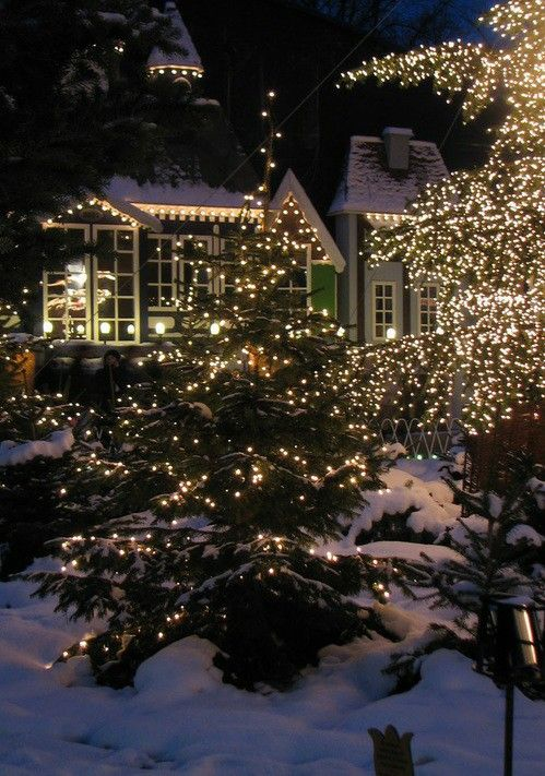 488 Best Outdoor Christmas Decorations Images On Pinterest