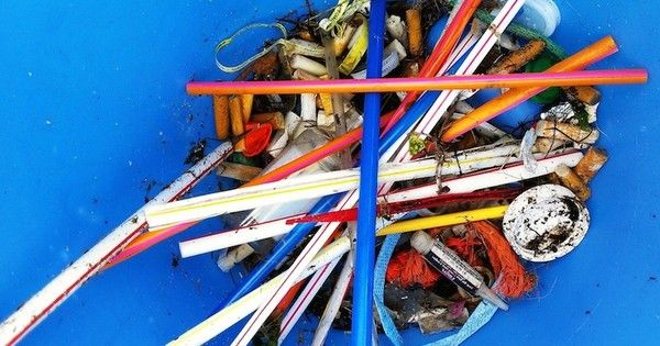 You'll never need another plastic straw after you read this.
